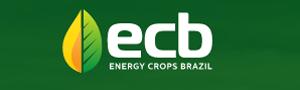 Energy Crops Brazil