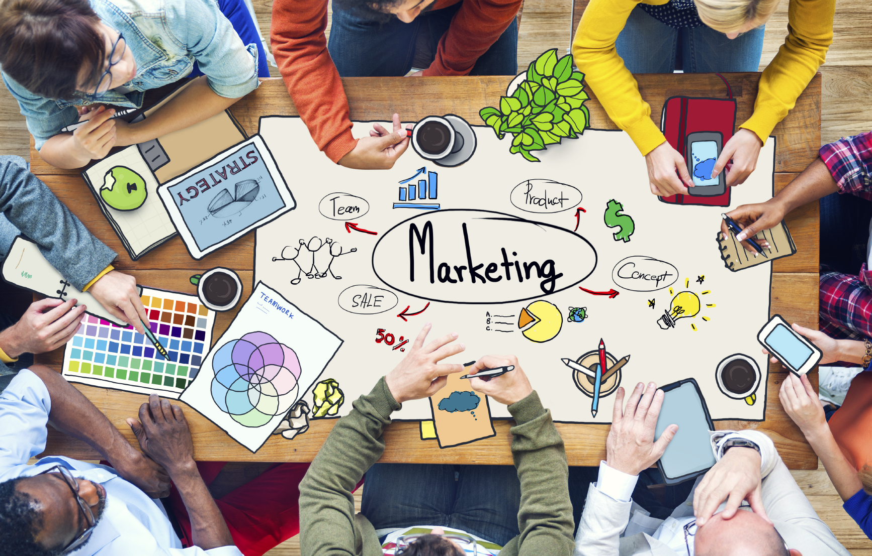 Marketing & promotional strategy