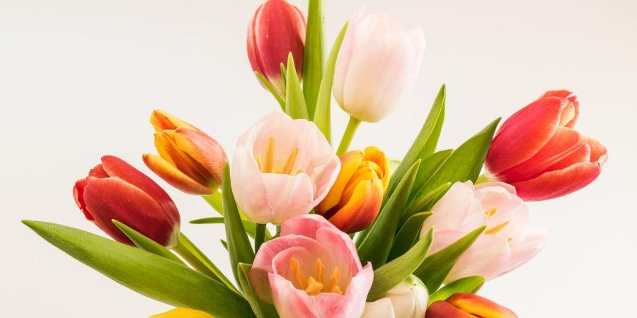 copywriter for florists
